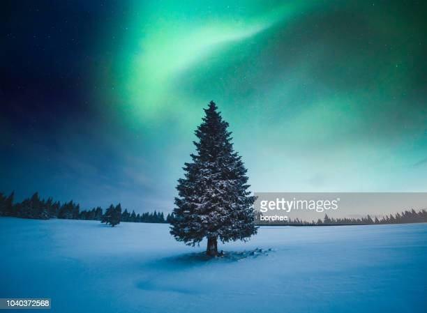 winter landscape with northern lights - aurora borealis stock pictures, royalty-free photos & images