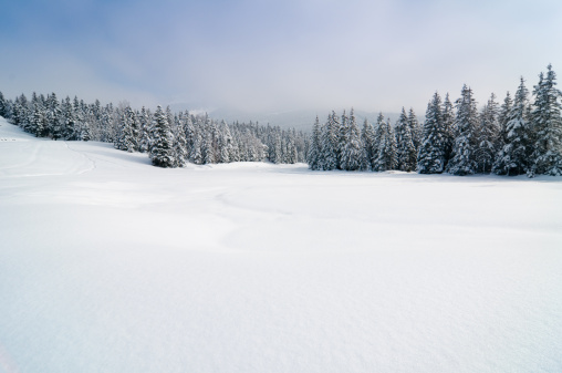 Winter Landscape with Snow and Trees 157639332