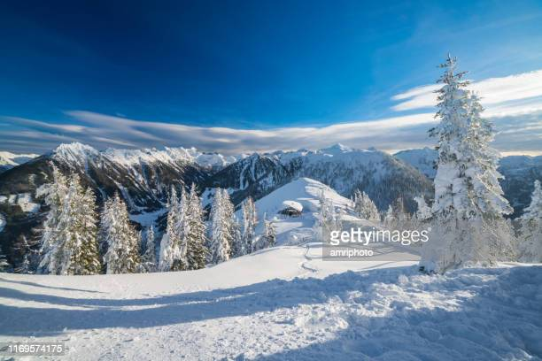 winter landscape with snowcapped mountains and trees - deep snow stock pictures, royalty-free photos & images
