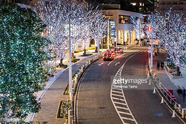 Winter lights at Roppongi Keyaki-zaka Dori