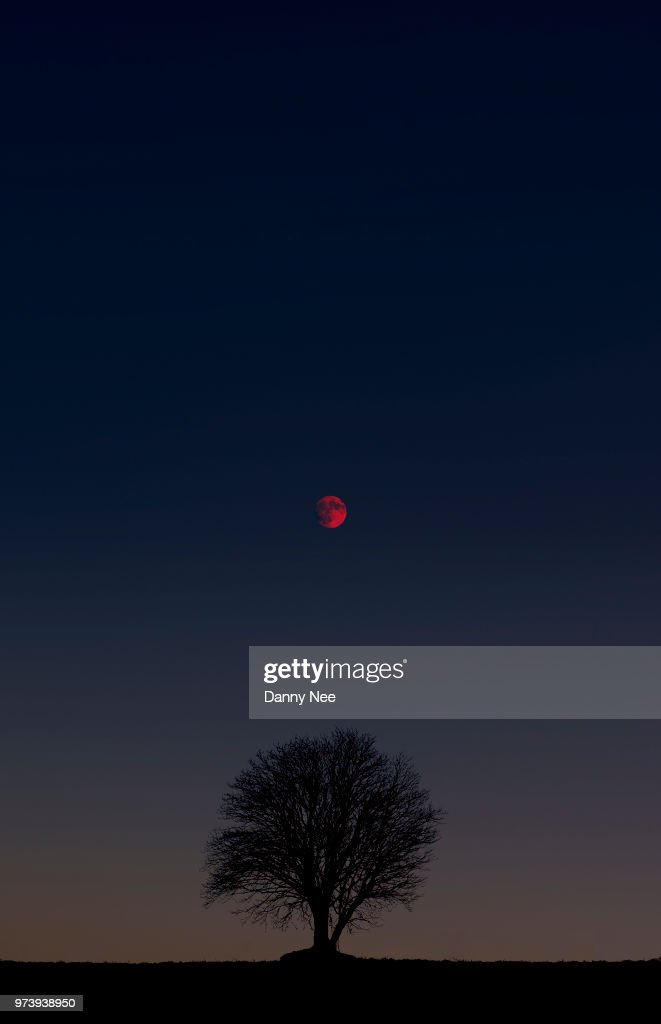 Winter Lunar Eclipse : Foto de stock