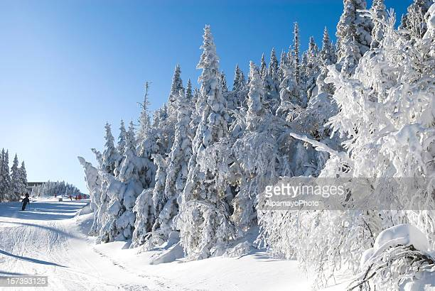 winter magic - viii - mont tremblant stock pictures, royalty-free photos & images
