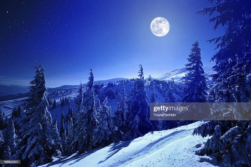 Winter moon : Stock Photo
