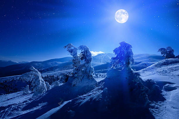 Winter Moon Wall Art
