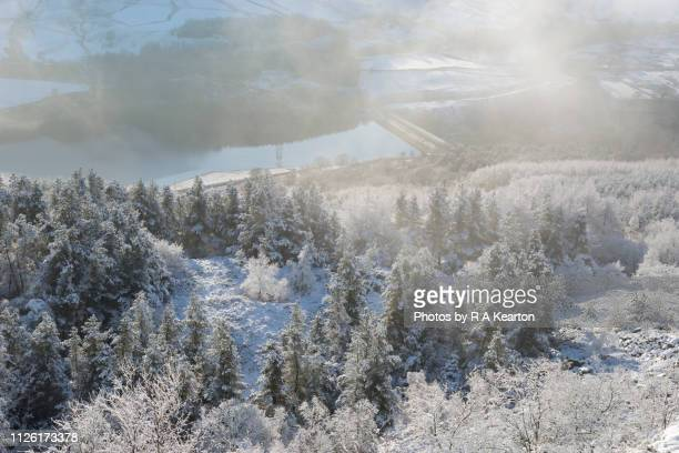winter morning in the longdendale valley, derbyshire, england - january stock pictures, royalty-free photos & images