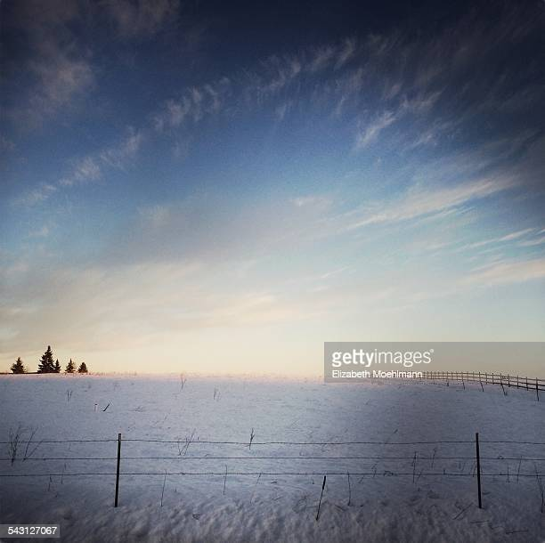 winter morning landscape in Montana