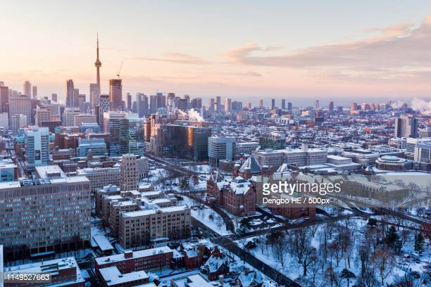 winter morning - toronto stock pictures, royalty-free photos & images