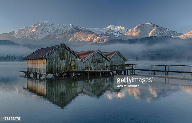 winter morning - achim thomae stock-fotos und bilder