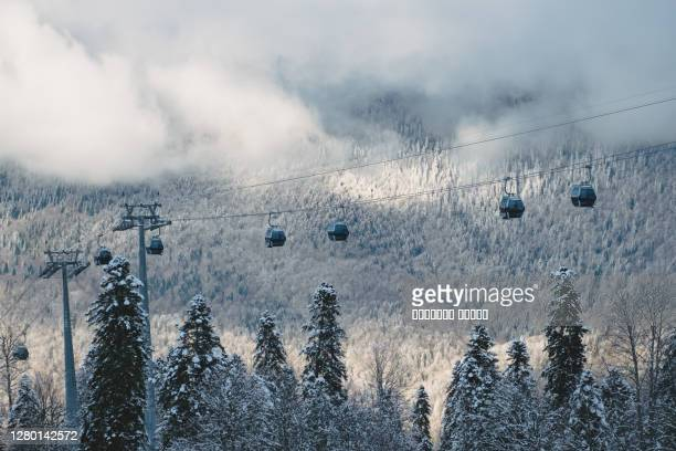 winter mountain landscape at the rosa khutor ski resort in sochi, russia. cable car cabin over pine trees in the snow - gondel stock-fotos und bilder