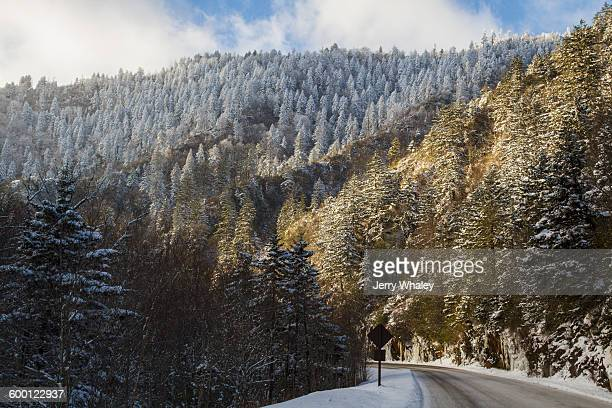 winter, newfound gap rd, great smoky mountains np - newfound gap stock pictures, royalty-free photos & images