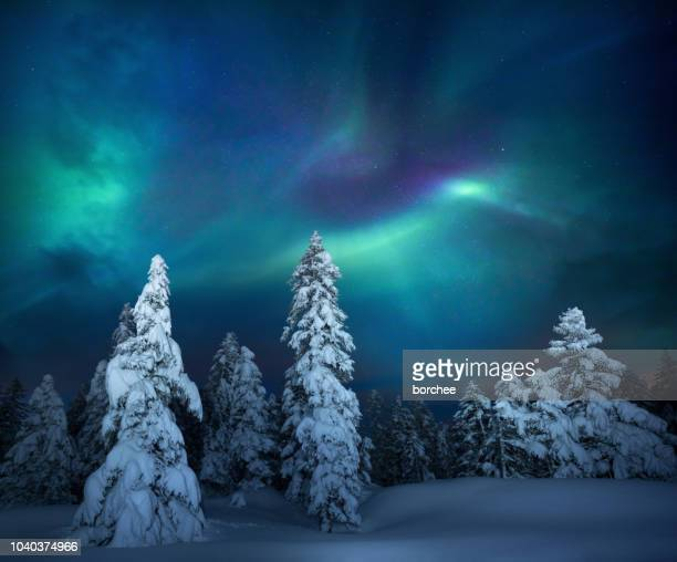 winter night - moody sky stock pictures, royalty-free photos & images