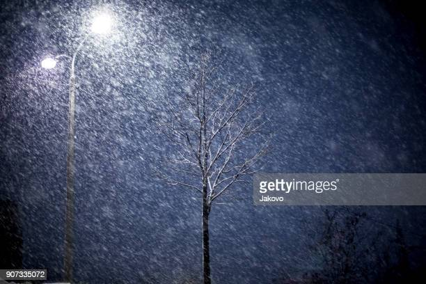 winter night - blizzard stock pictures, royalty-free photos & images