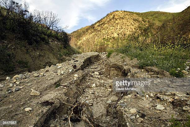 A winter of flashfloods and erosion caused by a lack of soilholding vegetation has washed away a road in the burn area of the Grand Prix Fire one of...
