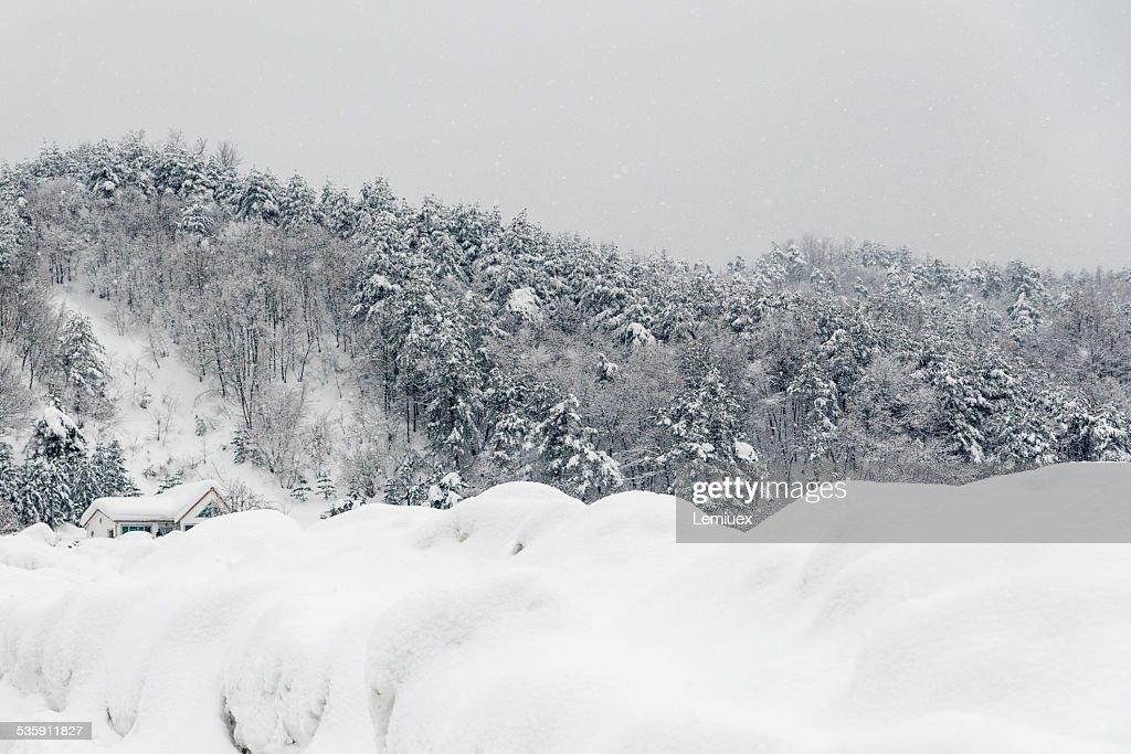 Inverno na exploração : Foto de stock