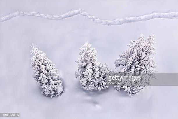 Inverno percorso
