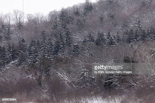 winter river valley - london ontario stock photos and pictures