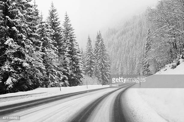 winter road and evergreen trees after a snowstorm - mountain pass stock pictures, royalty-free photos & images