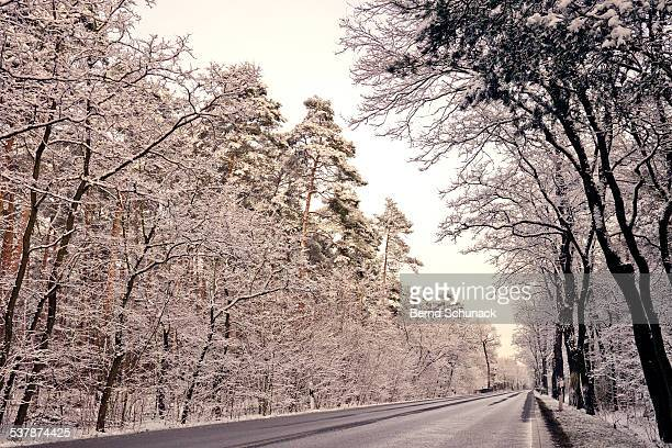 winter road - bernd schunack stock pictures, royalty-free photos & images