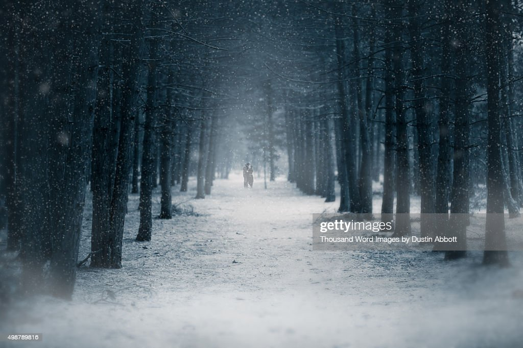 Winter Romance : Stock Photo