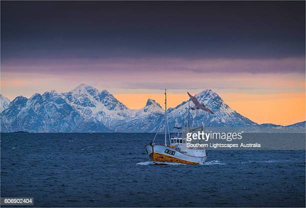 a winter scene at henningsvaer and the returning cod boats, lofoten peninsular, arctic circle of norway - lofoten stock pictures, royalty-free photos & images