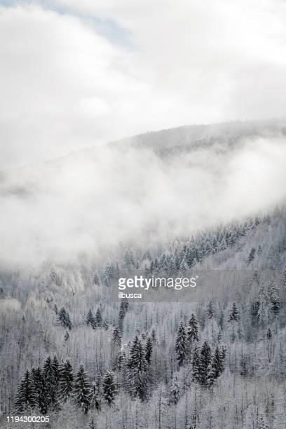 winter scene in the mountains, italian alps, valsesia - ilbusca foto e immagini stock