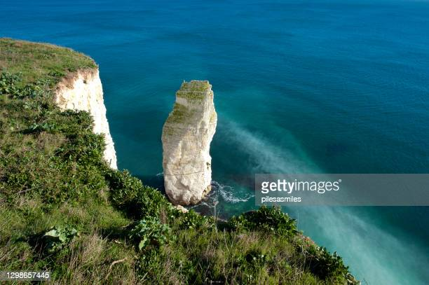 winter scene looking down on old harry rocks chalk stack, isle of purbeck, england - low tide stock pictures, royalty-free photos & images