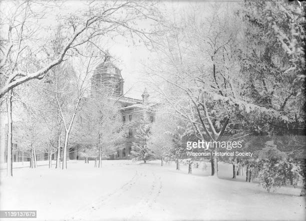 Winter scene looking towards Main Hall obscured by trees on the University of WisconsinMadison campus Madison Wisconsin March 30 1900 Original...