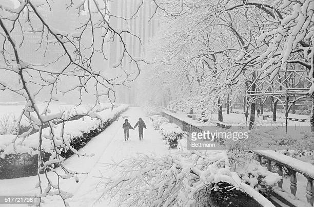 Winter Scene New York Snowcovered branches frame a couple as they walk on wet blanket of snow in midtown's Bryant Park A winter storm is expected to...