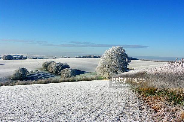 a winter scene - ウィルトシャー州 ストックフォトと画像