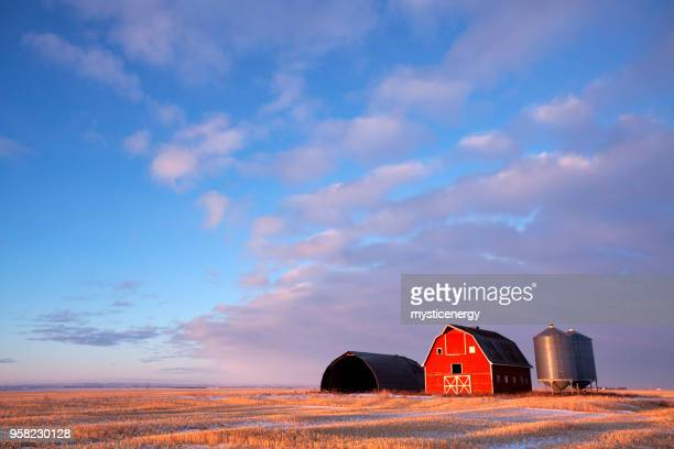 winter scene  red barn saskatchewan prairie canada - farm stock pictures, royalty-free photos & images
