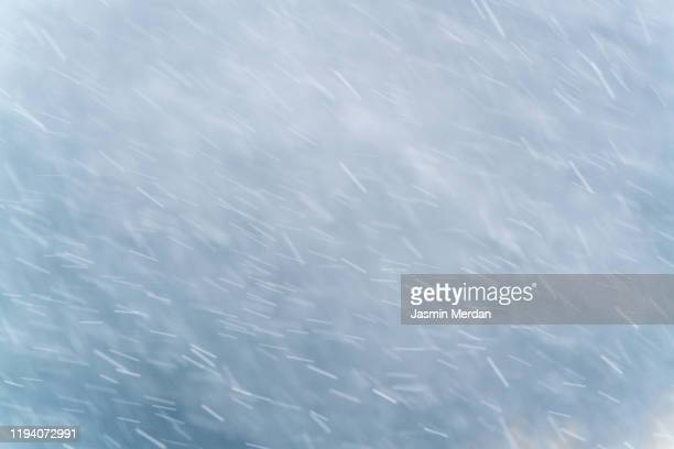 winter scene - snowfall on the blurred background - blizzard stock pictures, royalty-free photos & images