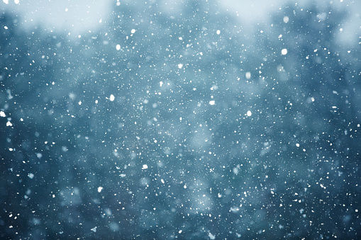 Winter scene - snowfall on the blurred background 863513024