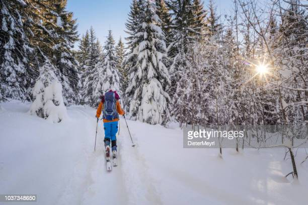 winter ski hiking - ski touring in alps - telemark stock pictures, royalty-free photos & images
