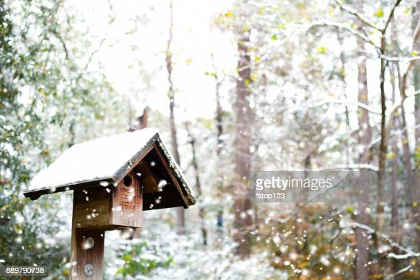 winter snow falling on outdoors landscape with birdhouse. - birdhouse stock pictures, royalty-free photos & images
