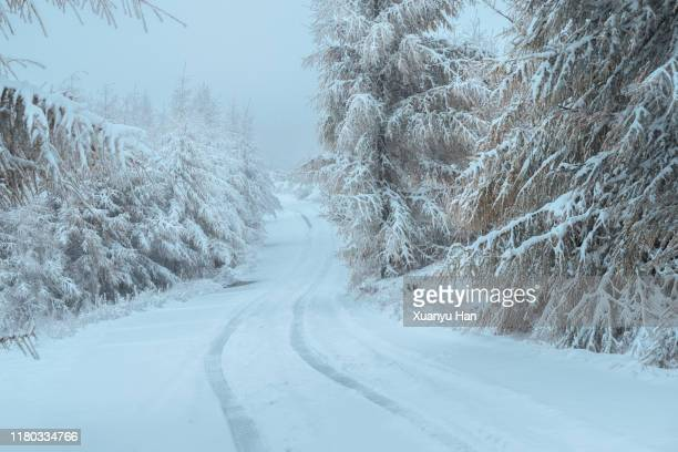 winter snow has traces of tires - snowfield stock pictures, royalty-free photos & images