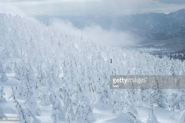 winter snow monsters in  zao onsen, japan - 山形県 ストックフォトと画像