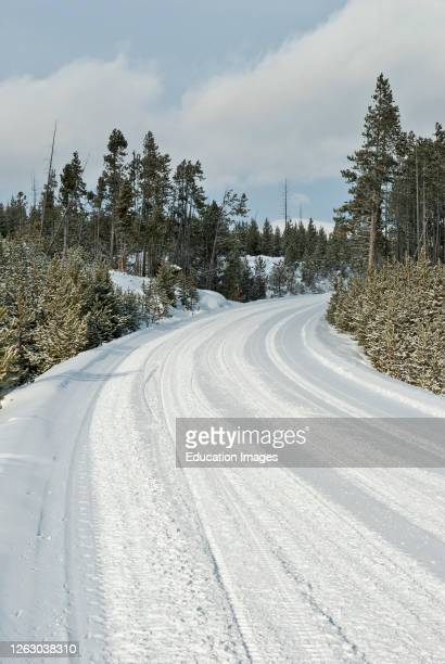 Winter Snow on a Road in Yellowstone National Park WY