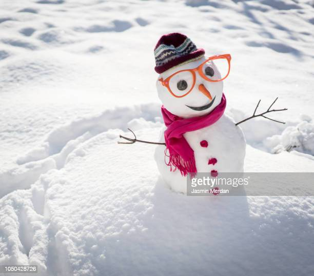 winter snowman on snow - snowman stock pictures, royalty-free photos & images