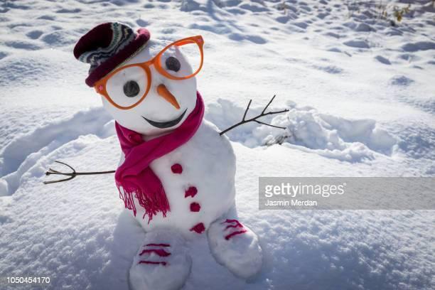 winter snowman on snow - bonhomme de neige photos et images de collection