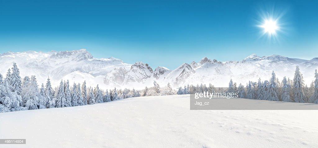 冬ユキコの風景 : ストックフォト