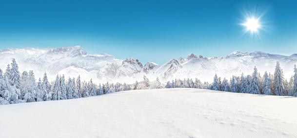 Winter snowy landscape 495114504