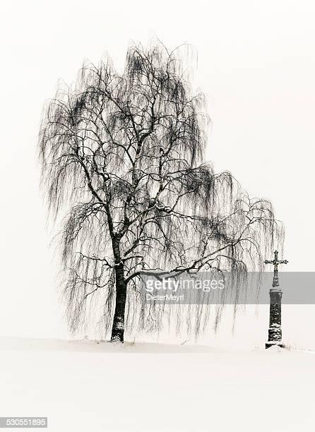 Soledad de invierno
