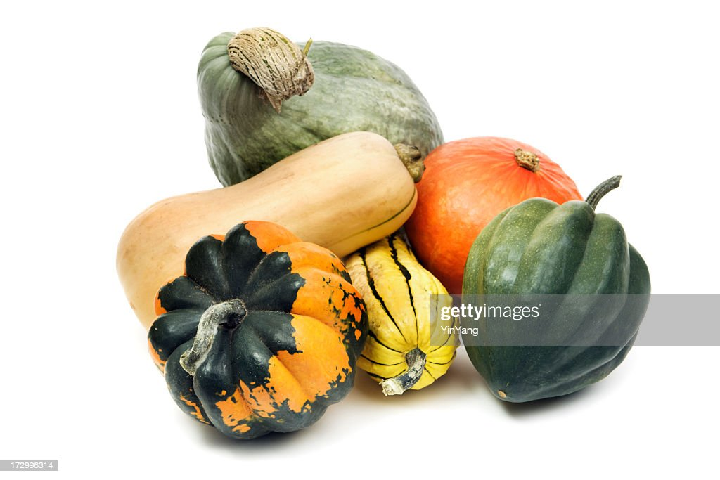 Winter Squash Gourd Family, Still Life Isolated on White Background : Stock Photo