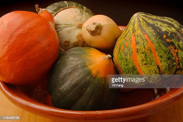 冬のスカッシュさまざまな静物、秋の野菜料理のボウル