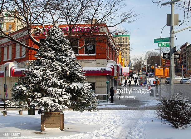 Winter Storm and Christmas Tree on Broadway in Washington Heights, NY
