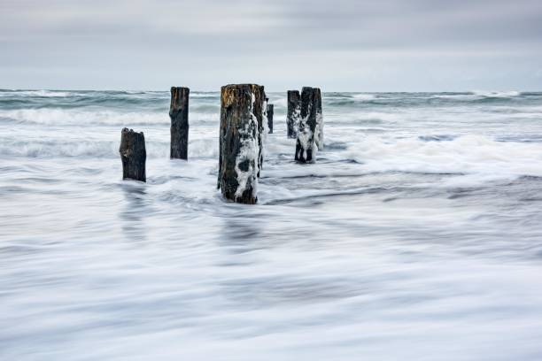 Winter storm at the Baltic Sea, old groyne in the spray of the surf, near Graal-Mueritz, Mecklenburg-Vorpommern, Germany