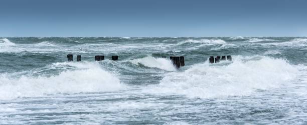 Winter storm at the Baltic Sea, old groyne in the surf, near Graal-Mueritz, Mecklenburg-Vorpommern, Germany
