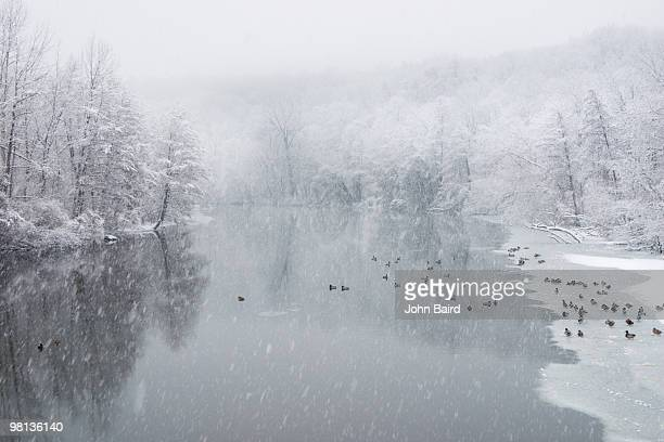Winter Storm on the Huron River