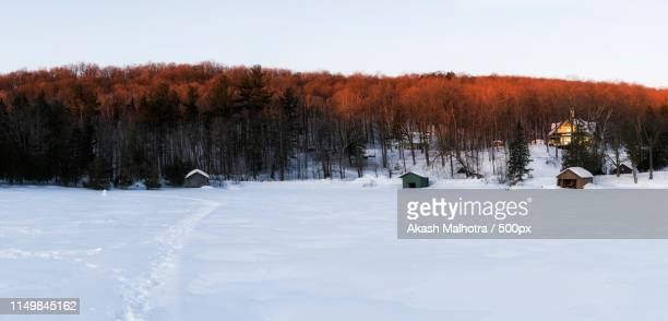 winter sun - gatineau stock pictures, royalty-free photos & images