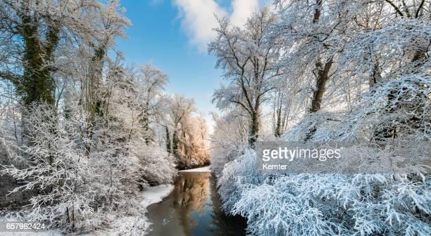 Winter-Sonnenaufgang an einem Fluss mit schneebedeckten Bäumen